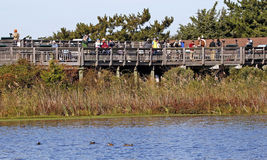 Oct 10 2015: Cape May NJ hawk watch platform Royalty Free Stock Images