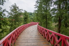 OCT East Shenzhen Meisha tea valley wetlands Bald Bridge Royalty Free Stock Photo