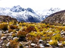 Autumn in highland , Tibet, China stock image