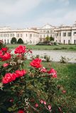 OCT 2018 ITALIË van Varese - bloemen tegen het Estense-Paleis, of Palazzo Estense stock foto