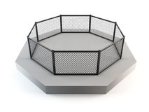 Octagon da luta da gaiola Imagens de Stock Royalty Free