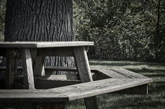 Octagon picnic table Royalty Free Stock Image