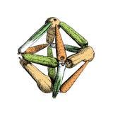 Octahedr dessus de vegetables-5 Images libres de droits