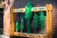 October 15, 2017 Arnold/CA/USA - Identification of evergreen tree types that can be found in Calaveras Big Trees State Park. Exhibit found at the entrance to royalty free stock photos