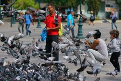 05 OCTOBER 2018, ATHENS, GREECE People play with the pigeons in the square. 05 OCTOBER 2018, ATHENS, GREECE People play with hundreds of pigeons in the square royalty free stock photos