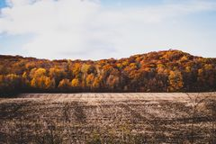 October in canada. Special colours, l`été indien Stock Photography