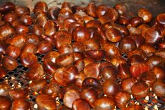 October chestnuts on ironed grill Royalty Free Stock Photo