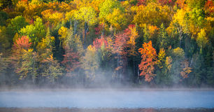 October colors reflected on Corry Lake. Stock Image
