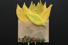 October. This is a envelope with yellow leaves Stock Photo