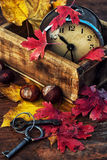 October fall foliage. In the background of the old clock royalty free stock image