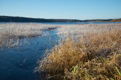 The october frost on the lake Kucane. The Estate Petrovskoe. Russia Royalty Free Stock Photos