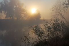 October morning. Sunrise over the river, misty morning Stock Image