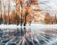 October mountain beech forest with first winter snow and blue ice and cracks on the surface of the ice. Winter. Ukraine Stock Photos