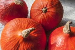 October pumpkin. On the kitchen table Royalty Free Stock Images