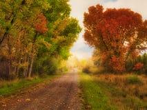 Free October Road Fantasy Stock Photo - 157182060