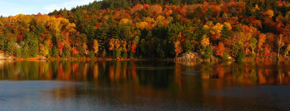 October's day at George Lake. North shore of George Lake in October's day Stock Image