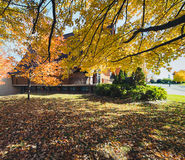 October`s Light. Wonderful Fall afternoon colors in the neighbourhood Royalty Free Stock Images