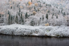 October snow Stock Images