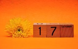 17 October on wooden blocks with a yellow daisy. On an orange background stock photos