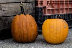 octobre Image libre de droits
