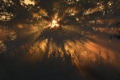 Octobre de coucher du soleil Photographie stock libre de droits