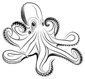 Octopus stock illustratie