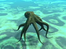 The octopus. Octopus  at the bottom of the sea Royalty Free Stock Photography
