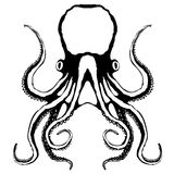 Octopus. Sketch of an octopus, vector, black and white stock illustration
