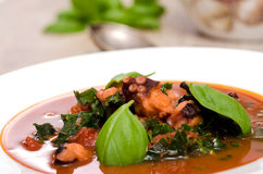 Octopus and basil with tomato sauce Royalty Free Stock Photo