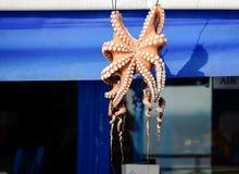 Octopus. Beautiful yellow octopus in Greek tavern Stock Image