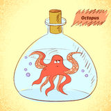 Octopus in the bottle. Royalty Free Stock Image