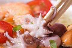 Octopus is clamped by chopsticks against other seafood Royalty Free Stock Photo