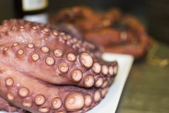 Octopus cooked. And presented in the table with accessories Stock Photo