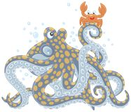 Octopus and Crab Royalty Free Stock Images
