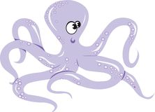 An octopus crawling Stock Image