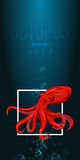 Octopus in deep. Vector color illustration on gradient background with decorative element. Stock Photo