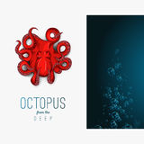 Octopus in deep. Vector color illustration on gradient background with decorative element. Royalty Free Stock Photos