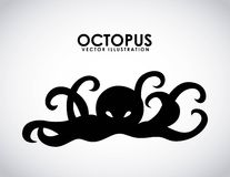 Octopus design Stock Photography