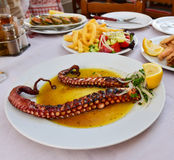 Octopus dinner Royalty Free Stock Photo