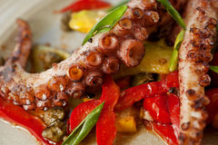 Octopus dish close up Stock Images