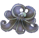 Octopus drawing isolated Royalty Free Stock Photo