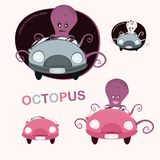 Octopus driving car Royalty Free Stock Image