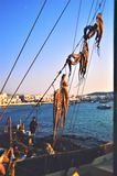 Octopus droog in de zon in mikonoseiland Griekenland stock foto's