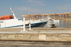 Octopus drying in the sun against the sea at Paros island in Greece. Royalty Free Stock Photos