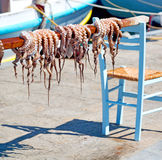 Octopus   drying  in the sun europe greece santorini and light Royalty Free Stock Photos