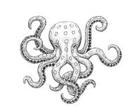 Octopus Engraving Illustration stock illustration