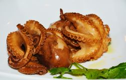 Octopus food Royalty Free Stock Photo