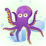 Octopus Fortune Teller. With Crystal Cube Stock Photography