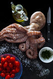 Octopus with fresh raw ingredients: olive oil, tomatoes, parsley. Salt. on a black background Royalty Free Stock Images