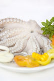 Octopus with fresh vegetables Stock Image